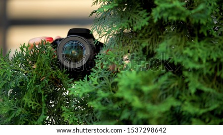 Female hands holding camera behind trees, private detective investigation Royalty-Free Stock Photo #1537298642