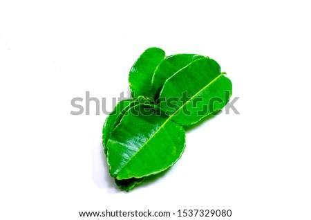 Fresh kaffir or lime leaves green leaf isolated on white background #1537329080
