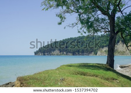 hill against the background of the sea tree and mounta green sea ocean azure blue #1537394702