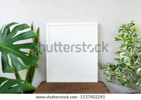 White frame photo with houseplants. Earth day concept