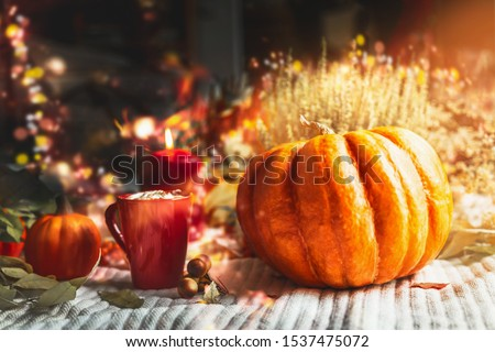 Autumn home comfort concept. Cup of hot chocolate or coffee with pumpkins and burning candles at window in sunset light and bokeh. Cozy fall still life