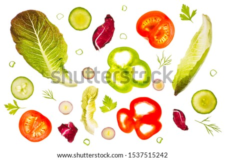 Romaine lettuce leaves, radicchio, slices of green and red peppers, tomato and red scallion slices, cucumber slices, dill and parsley backlit on a light table. Isolated on a white background. #1537515242