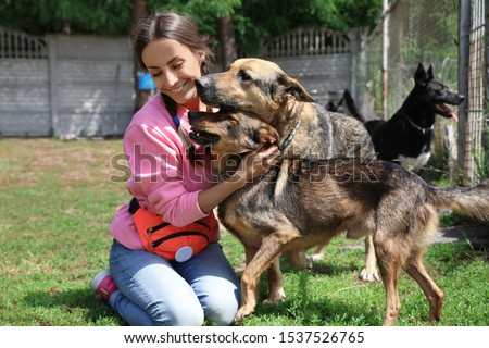 Female volunteer with homeless dogs at animal shelter outdoors Royalty-Free Stock Photo #1537526765