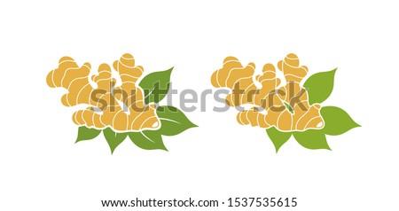 Ginger. Isolated ginger on white background Royalty-Free Stock Photo #1537535615