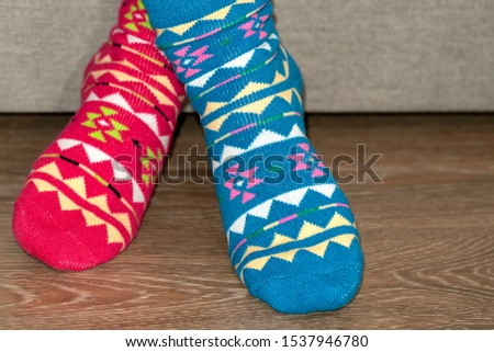 Women's legs in different beautiful socks. Colored socks on a background. Foot concept warm. Concept warm in winter #1537946780