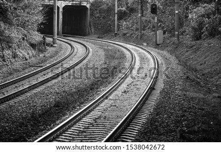 Railroad, two tracks. The frame is a smooth rotation. Entry into the tunnel. Black and white photo, high contrast. The picture shows trees, bushes, grass