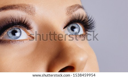 Woman eyes with long eyelashes and smokey eyes make-up. Eyelash extensions, makeup, cosmetics, beauty. Close up, macro Royalty-Free Stock Photo #1538459954