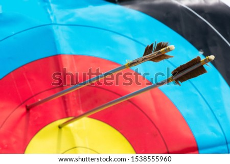 Pair of arrows near the target #1538555960