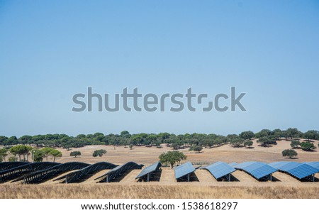 solar panels or panels installed in the field #1538618297