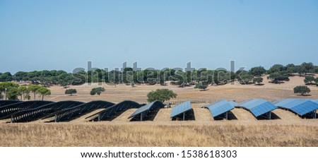 solar panels or panels installed in the field #1538618303