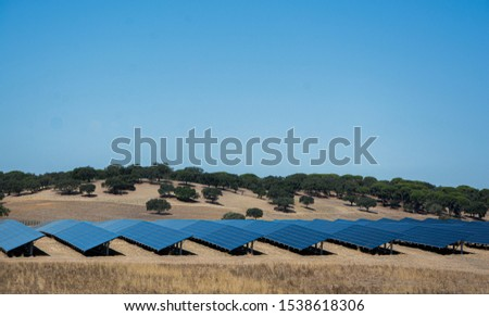 solar panels or panels installed in the field #1538618306