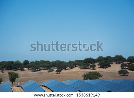 solar panels or panels installed in the field #1538619149