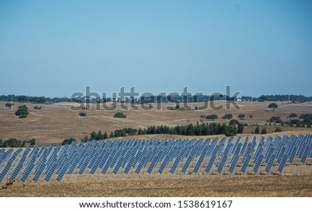 solar panels or panels installed in the field #1538619167