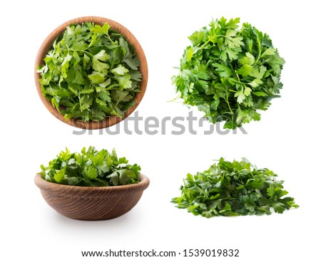 Parsley isolated on white background. Top view. Parsley leaves with copy space for text. Herbs isolated on white. Parsley leaves on white background.  #1539019832