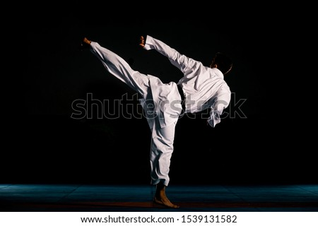 Karate martial arts. Fighter is looking at the camera, isolated on dark background #1539131582