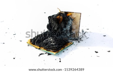burning book in the snow. pages with the text in the open book burn with a bright flame. #1539264389