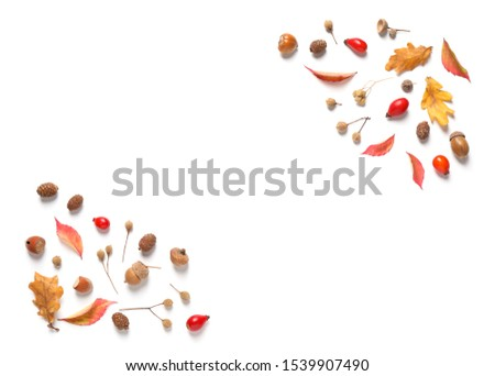 Beautiful composition with autumn leaves on white background, flat lay. Space for text #1539907490