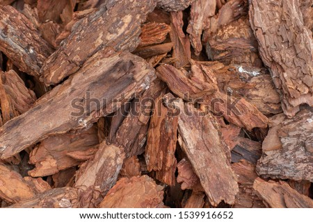 Tree bark natural background wallpaper backdrop. Brown natural pieces of sliver of wood bark. Deciduous kitchen bark texture #1539916652