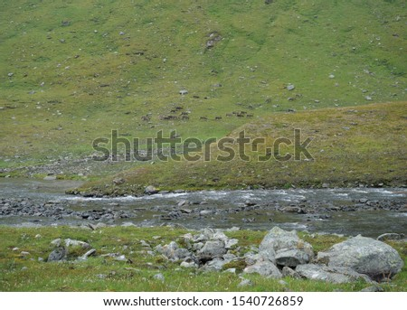 Lapland glacial river with herd of northern reindeer grazing on rocky green hill slope. #1540726859