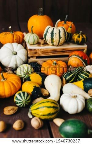 agriculture, autumn, autumn harvest, autumn season, autumn still life, autumnal, background, beautiful, carved, celebration, colorful, countryside, decor, decoration, decorative, fall, fall time, farm #1540730237