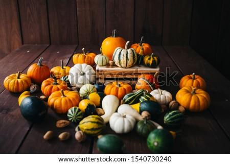 agriculture, autumn, autumn harvest, autumn season, autumn still life, autumnal, background, beautiful, carved, celebration, colorful, countryside, decor, decoration, decorative, fall, fall time, farm #1540730240