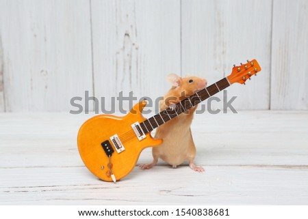 Сute mouse plays guitar, sings. Fun pet fond of music. Talented animal: home musician. Musical mouse celebrate. Mouse rock star on stage gives concert. Postcard with mouse. Talent, song. Celebration #1540838681
