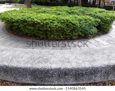 Park flowerbed and stone brick road #1540863545