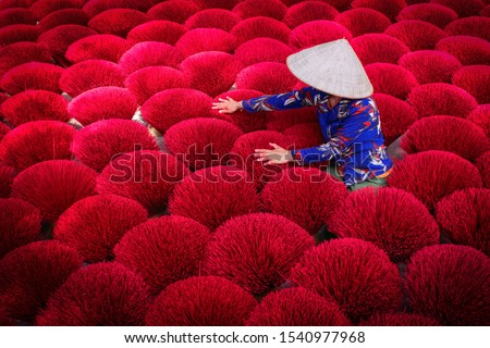 Incense sticks drying outdoor with Vietnamese woman wearing conical hat in north of Vietnam #1540977968