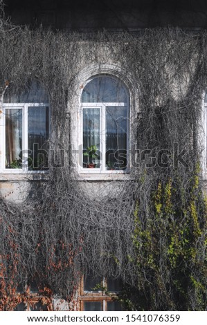 View of a beautiful house exterior.Exterior facade windows. #1541076359