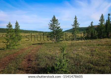 Panoramic view of tundra fields, Polar Ural, Russia