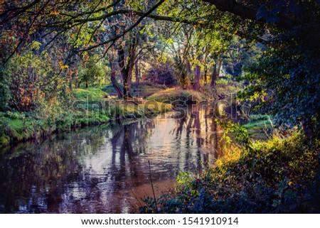 Autumnal impression on the stream #1541910914