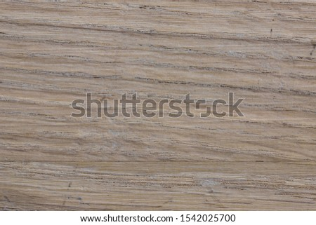 Oal wood slab color texture as natural background front view #1542025700