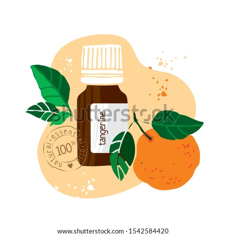 Bottle with tangerine essential oil drawn by hand on a white background. Aromatherapy, cosmetics, folk and alternative medicine. Stamp on bottle natural essential oil. Cute cartoon Vector illustration #1542584420