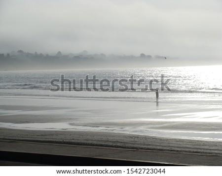 Foggy beach, Foggy shoreline, Foggy coast, East Coast shoreline, East Coast, Maine coast, Maine, Maine shoreline, walking on the beach, alone on the beach, by the ocean, foggy ocean, sea Royalty-Free Stock Photo #1542723044
