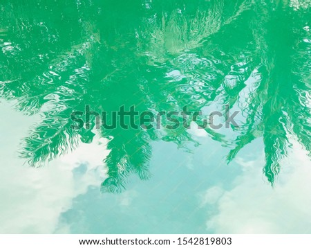 Palm trees reflected in the water, soft focus