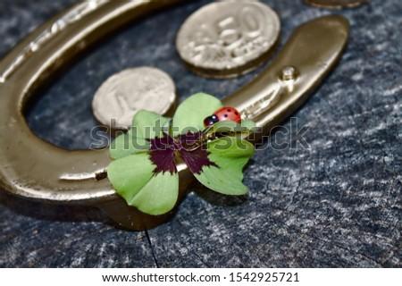 golden horseshoe, ladybird, money and a lucky clover #1542925721
