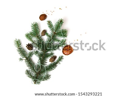 Christmas tree branch with cones and decorations #1543293221