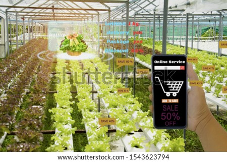 customer hand hold smartphone,shopping agricultural produce in farm through modern wireless network with 5G technology in farms, concept Agriculture technology for development with internet of things #1543623794
