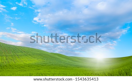 Beautiful landscape with green grass field #1543635413