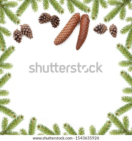 Evergreen fir branch with fir cone as decoration isolated on white background #1543635926