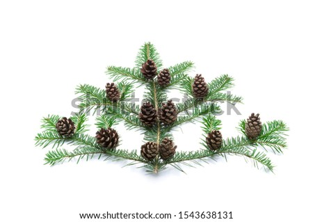 Evergreen fir branch with fir cone as decoration isolated on white background #1543638131
