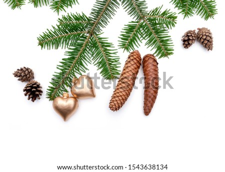 Evergreen fir branch with fir cone as decoration isolated on white background #1543638134