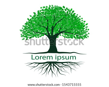 Trees with green leaves look beautiful and refreshing. Tree and roots LOGO style. #1543715555
