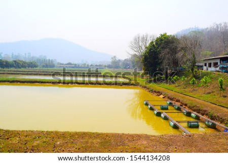 this pic shows earth pond in aquaculture farm with cage structure floating in pond