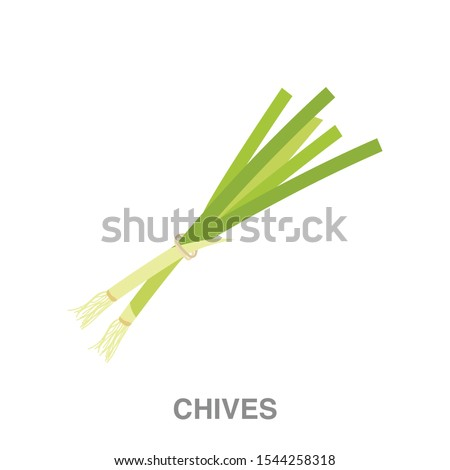 Chive flat icon on white transparent background. You can be used chive icon for several purposes. #1544258318