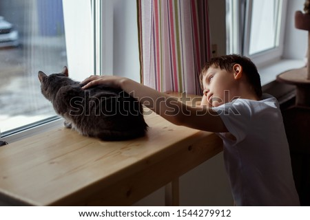 A little boy looks out the window and strokes the cat #1544279912