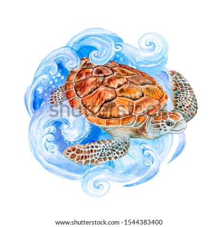 Sea turtle on the sea wave isolated on white background. Watercolor. Illustration.  Template. Close-up. Clip art. Hand drawing. Painting