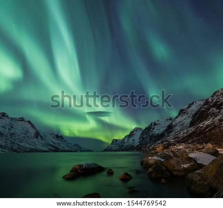 aurora is very very beautifull #1544769542
