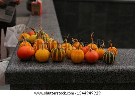 Little pumpkins lie on the street of the metropolis #1544949929