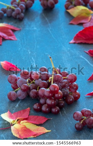 grapes  on dark marble countertop and a yellow autumn leaf #1545566963
